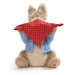 Animated Peek a Boo Peter Rabbit
