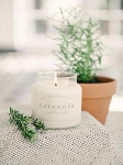 Charleston Candle Co. - Lavender 16 oz Soy Candle
