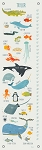 Marine Life A-Z Growth Chart